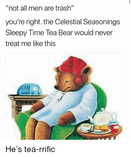 "Memes, Trash, and Bear: ""not all men are trash""  you're right. the Celestial Seasonings  Sleepy Time lea Bear would never  treat me like this He's tea-rrific"
