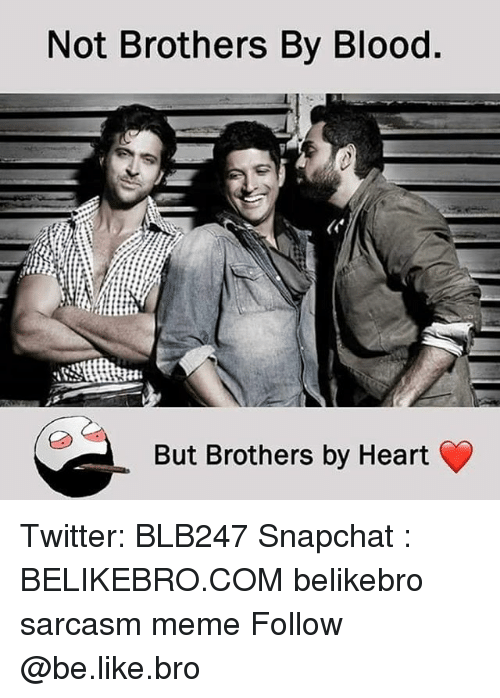 Be Like, Meme, and Memes: Not Brothers By Blood  But Brothers by Heart Twitter: BLB247 Snapchat : BELIKEBRO.COM belikebro sarcasm meme Follow @be.like.bro