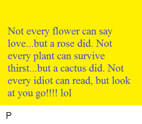 Not Every Flower Can Say Lovebut A Rose Did Not Every Plant Can