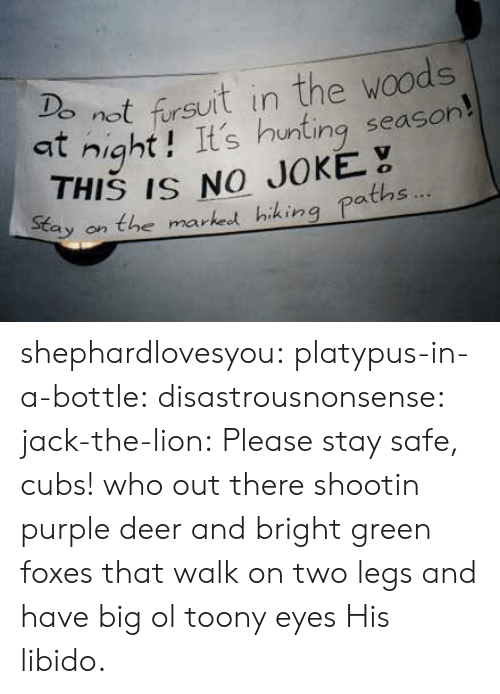 Deer, Tumblr, and Hunting: not fursuit in the woods  at night! It's hunting season  9  THIS IS NO JOKE  tay on the marked hiking paths shephardlovesyou:  platypus-in-a-bottle:  disastrousnonsense:  jack-the-lion:  Please stay safe, cubs!  who out there shootin purple deer and bright green foxes that walk on two legs and have big ol toony eyes   His libido.
