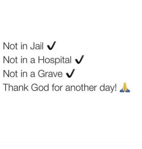 Memes, 🤖, and Graves: Not in Jail  V  Not in a Hospital V  Not in a Grave  V  Thank God for another day!