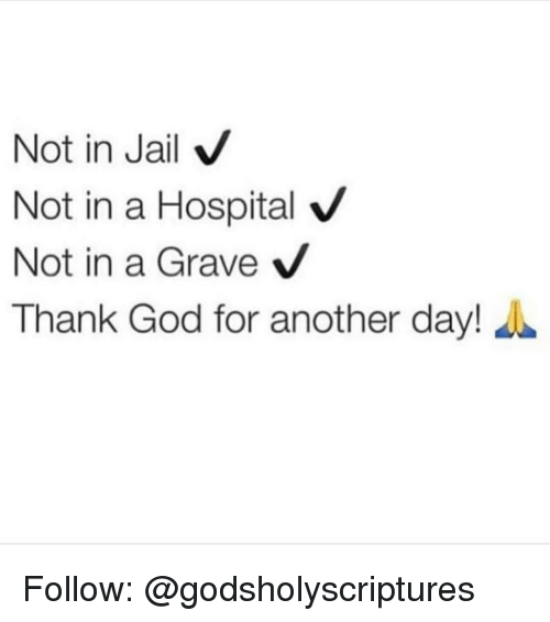 Memes, 🤖, and Graves: Not in Jail V  Not in a Hospital  V  Not in a Grave  V  Thank God for another day! Follow: @godsholyscriptures