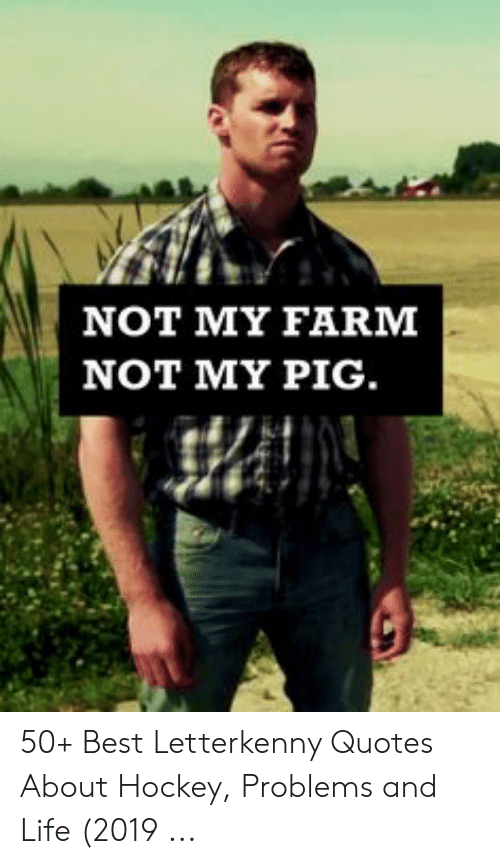 NOT MY FARM NOT MY PIG 50+ Best Letterkenny Quotes About