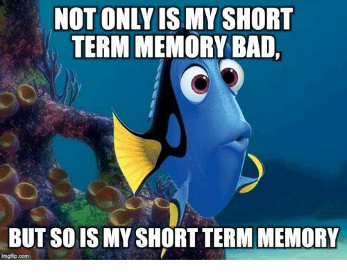 Image result for short term memory meme
