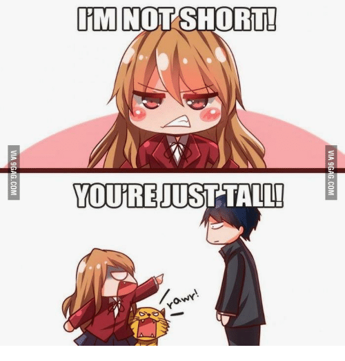 25 best memes about anime girl with short brown hair and brown tall anime girl with short brown hair and brown eyes and ovni not short itm youre just tall ovny voltagebd Choice Image