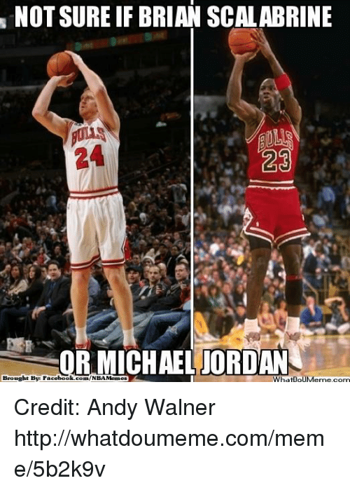 Facebook, Meme, and Michael Jordan: NOT SURE IF BRIAN SCALABRINE  R MICHAEL JORDAN  WhatpouM  com  Brought Bye Facebook.com/NBAMemea Credit: Andy Walner
