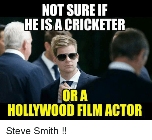 Memes, 🤖, and Smiths: NOT SURE IF  HE ISACRICKETER  OR A  HOLL WOOD FILM ACTOR Steve Smith !!
