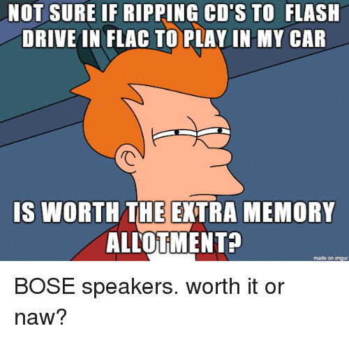 462f2293801 NOT SURE IF RIPPING CD'S TO FLASH DRIVE IN FLAC TO PLAVIN MY CAR IS ...