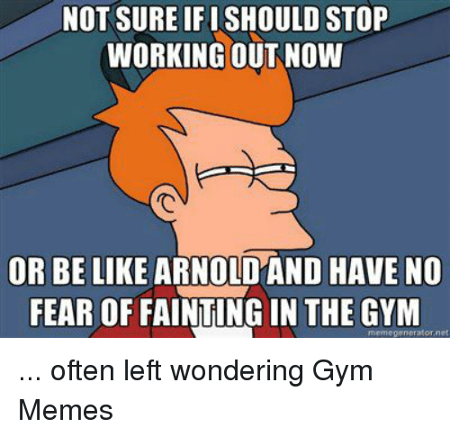 Be Like, Gym, and Meme: NOT SURE IFISHOULD STOP  WORKING OUT NOW  OR BE LIKE ARNO  HAVE NO  FEAR OF FAINTINGIN THE GYM  meme generator net ... often left wondering