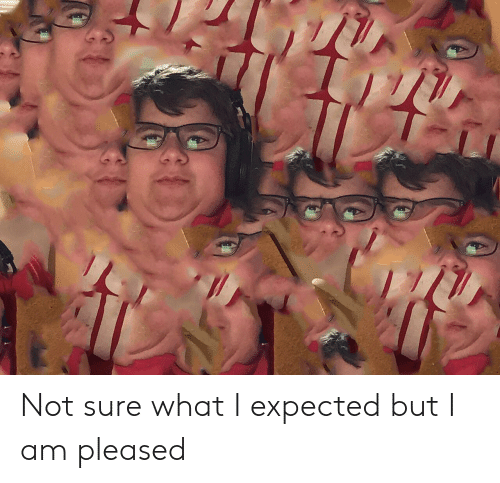 Not Sure What I Expected but I Am Pleased | Reddit Meme on ME ME