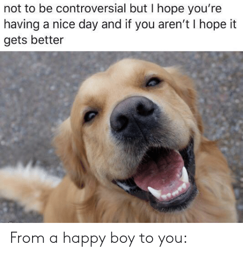 Happy, Controversial, and Hope: not to be controversial but I hope you're  having a nice day and if you aren't I hope it  gets better From a happy boy to you: