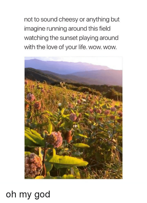 God, Life, and Love: not to sound cheesy or anything but  imagine running around this field  watching the sunset playing around  with the love of your life. wow. wow. oh my god
