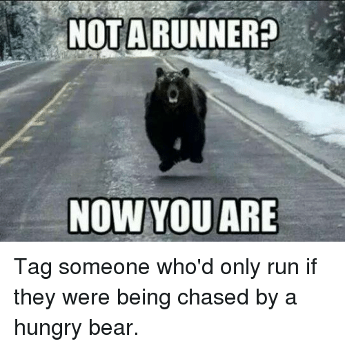 Hungry, Memes, and Run: NOTA RUNNER  NOW YOU ARE Tag someone who'd only run if they were being chased by a hungry bear.
