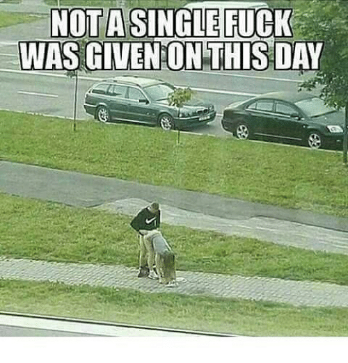 Memes, 🤖, and On This Day: NOTA SINGLE FUCK  WAS GIVEN ON THIS DAY