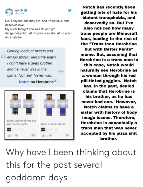 """Love, Meme, and Minecraft: Notch has recently been  getting lots of hate for his  latant transphobia, and  deservedly so. But l've  also noticed how many  trans people are Minecraft  fans, leading to the rise of  the """"Trans lcon Herobrine  but with Better Pants""""  meme. But, assuming that  Herobrine is a trans man in  this case, Notch would  naturally see Herobrine as  a woman through his red  pill-tinted goggles. Notch  has, in the past, denied  claims that Herobrine is  his brother, as he has  never had one. However.  Notch claims to have a  sister with history of body  image issues. Therefore,  Herobrine is canonically a  trans man that was never  accepted by his pizza shit  rother.  notch >  @notch  No. They feel like they are, and it's serious, and  deserves love  My sister thought she was fat and got  dangerously thin. At no point was she. At no point  did i hate her.  Getting loads of tweets and  emails about Herobrine again  I don't have a dead brother,  and he never was in the  game. Not real. Never was.  Notch on Herobrine[8]  rans icon herobrine but  with better pants  trans icon herobrine Why have I been thinking about this for the past several goddamn days"""