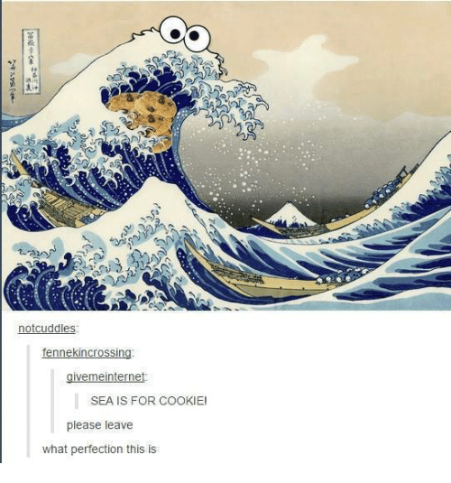 Humans of Tumblr, Cookie, and What: notcuddles  ennekincrossi  ne  SEA IS FOR COOKIE  please leave  what perfection this is