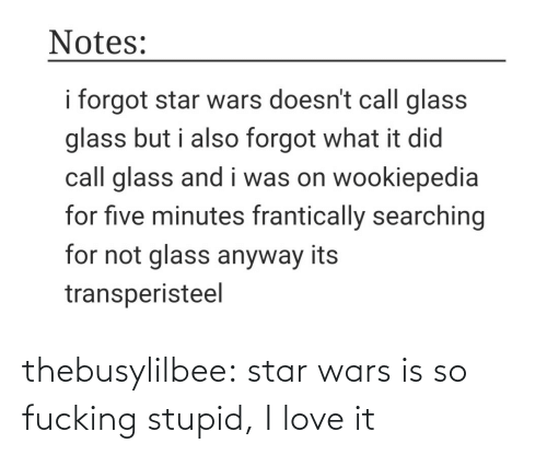Love, Star Wars, and Tumblr: Notes:  i forgot star wars doesn't call glass  glass but i also forgot what it did  call glass and i was on wookiepedia  for five minutes frantically searching  for not glass anyway its  transperisteel thebusylilbee:  star wars is so fucking stupid, I love it