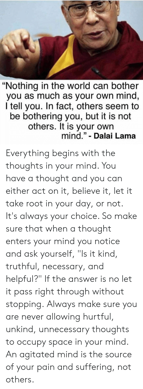 "Memes, Dalai Lama, and Space: ""Nothing in the world can bother  you as much as your own mind,  I tell you. In fact, others seem to  be bothering you, but it is not  others. It is your own  mind."" - Dalai Lama Everything begins with the thoughts in your mind. You have a thought and you can either act on it, believe it, let it take root in your day, or not. It's always your choice. So make sure that when a thought enters your mind you notice and ask yourself, ""Is it kind, truthful, necessary, and helpful?"" If the answer is no let it pass right through without stopping. Always make sure you are never allowing hurtful, unkind, unnecessary thoughts to occupy space in your mind. An agitated mind is the source of your pain and suffering, not others."