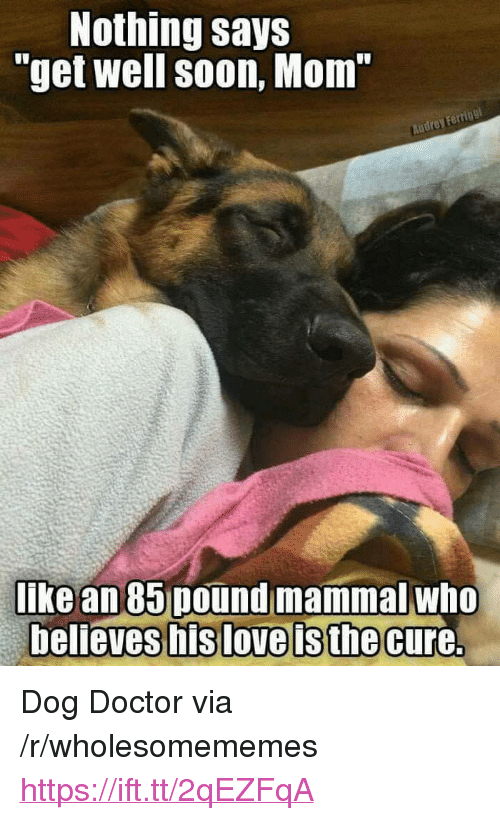 "Doctor, Soon..., and Mom: Nothing says  ""get well soon, Mom  Ferrigg  like an 85 pound mammal who <p>Dog Doctor via /r/wholesomememes <a href=""https://ift.tt/2qEZFqA"">https://ift.tt/2qEZFqA</a></p>"