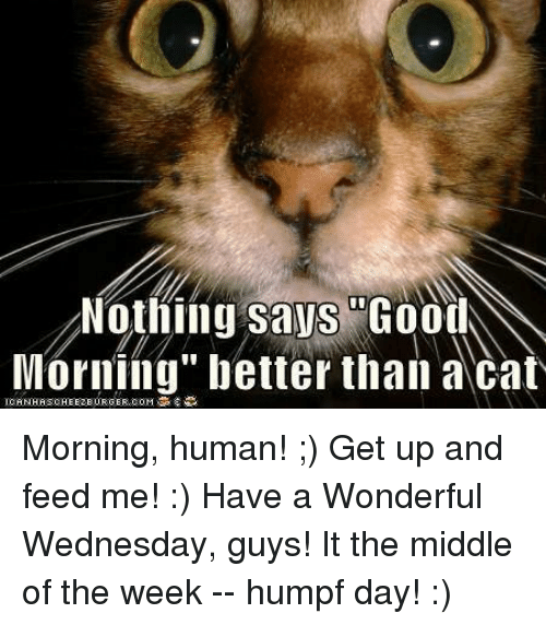 Image result for have a good wednesday images