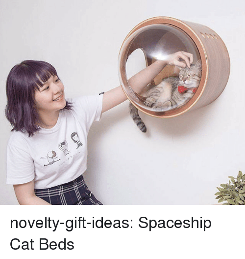 Tumblr, Blog, and Cat: novelty-gift-ideas:  Spaceship Cat Beds