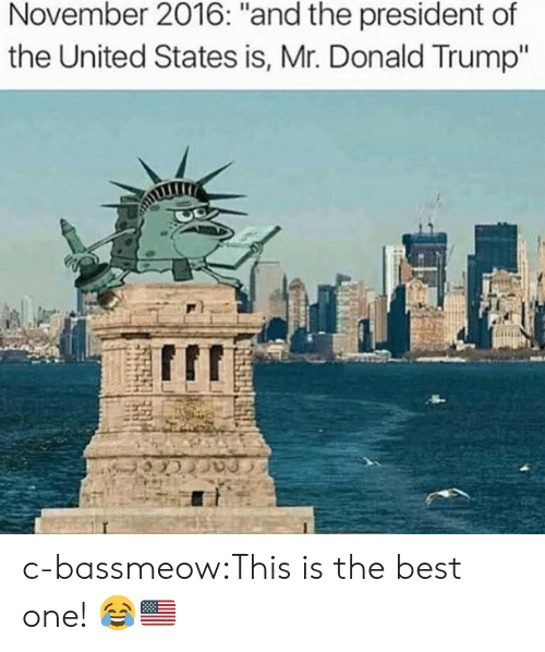 "Donald Trump, Tumblr, and Best: November 2016: ""and the president of  the United States is, Mr. Donald Trump"" c-bassmeow:This is the best one! 😂🇺🇸"
