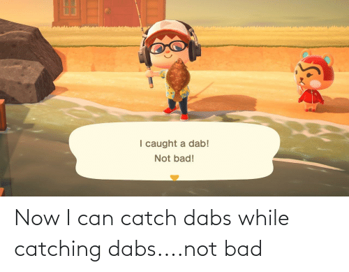 Bad, The Dab, and Weed: Now I can catch dabs while catching dabs....not bad