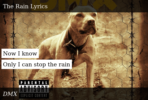Auf Abstand Preis bleibt stabil Herbst Schuhe Now I Know Only I Can Stop the Rain | Donald Trump Meme on ME.ME