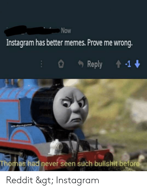 Now Instagram Has Better Memes Prove Me Wrong Reply -1
