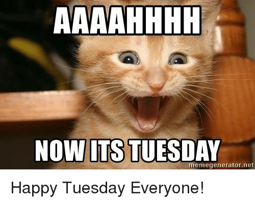 Its Tuesday NOW ITS TUESDAY...