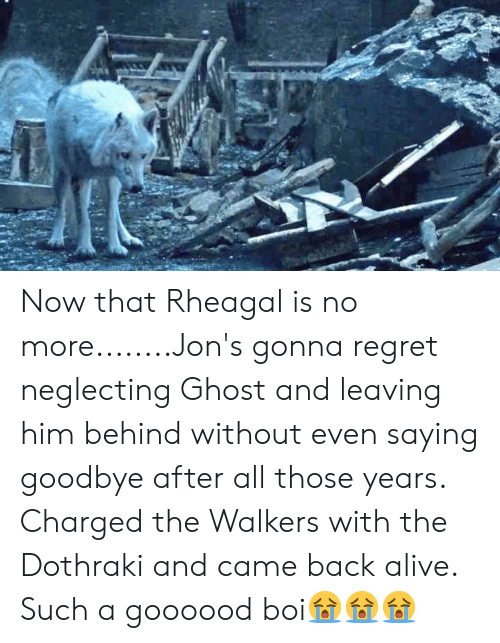 Now That Rheagal Is No moreJon's Gonna Regret Neglecting Ghost and