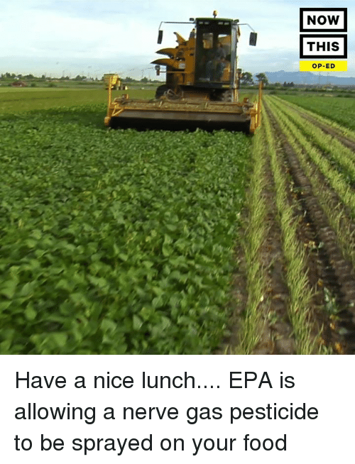Food Nice And Epa NOW THIS OP ED Have A Lunch