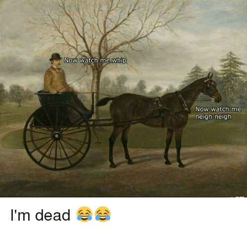 Memes, Watch Me, and Whip: Now watch me whip  NOW Watch me  neigh neigh I'm dead 😂😂