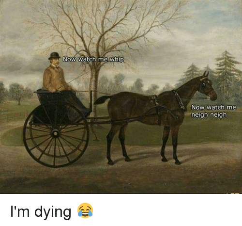 Memes, Watch Me, and Whip: Now watch me whip  NOW Watch me  neigh neigh I'm dying 😂