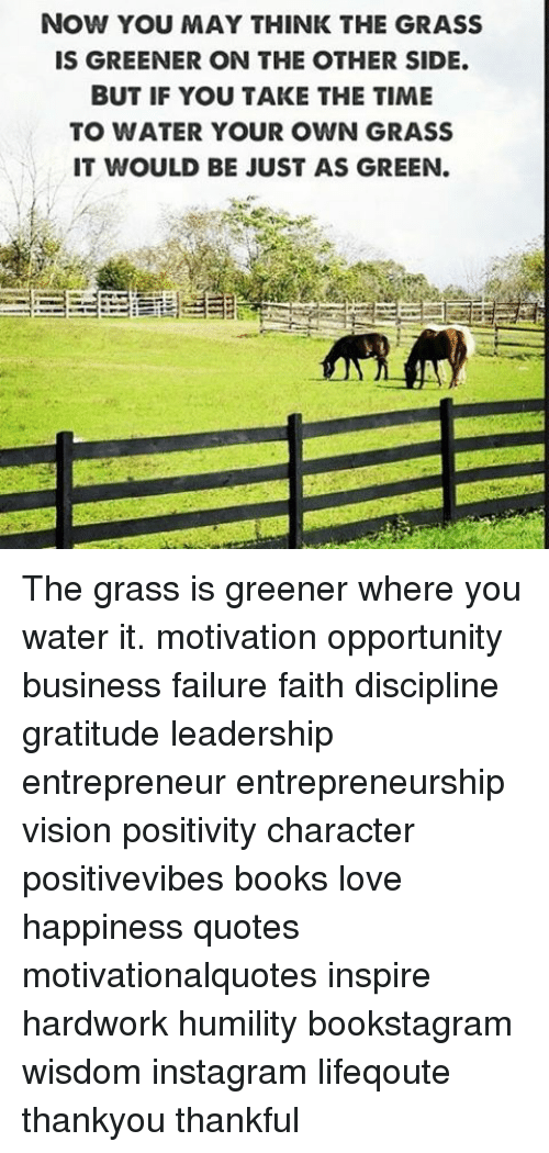Now You May Think The Grass Is Greener On The Other Side But If You