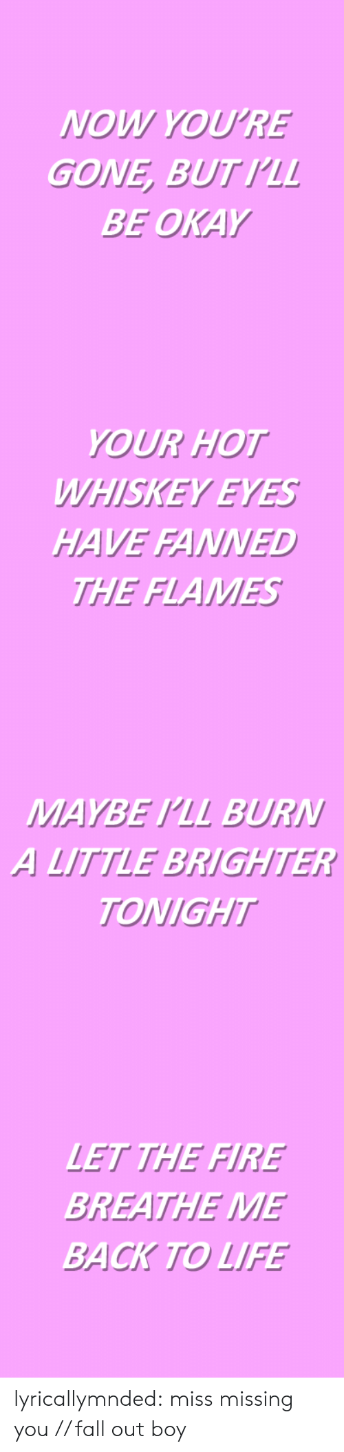 Fall, Fire, and Life: NOW YOU'RE  GONE, BUTIL  BE OKAY   YOUR HOT  WHISKEY EYES  HAVE FANNED  THE FLAMES   MAYBE PLL BURN  A LITTLE BRIGHTER  TONIGHT   LET THE FIRE  BREATHE ME  BACK TO LIFE lyricallymnded:  miss missing you // fall out boy