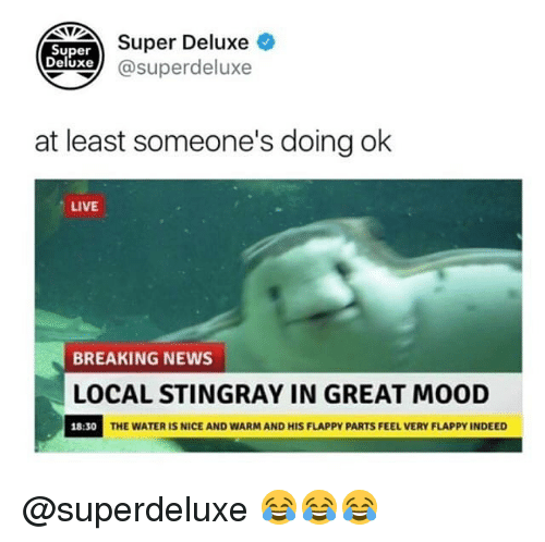 Memes, Mood, and News: NUDEAer Deluxe  xe@superdeluxe  Super  Deluxe  at least someone's doing ok  LIVE  BREAKING NEWS  LOCAL STINGRAY IN GREAT MOOD  18:30  THE WATER IS NICE AND WARM AND HIS FLAPPY PARTS FEEL VERY FLAPPY INDEED @superdeluxe 😂😂😂