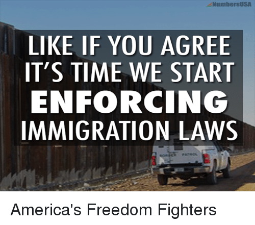Memes, Immigration, and Freedom: NumbersUSA  LIKE IF YOU AGREE  IT'S TIME WE START  ENFORCING  IMMIGRATION LAWS America's Freedom Fighters