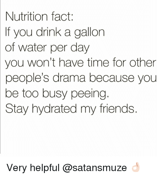 Friends, Funny, and Time: Nutrition fact:  If you drink a gallon  of  water per day  you won't have time for other  people's drama because you  be too busy peeing  Stay hydrated my friends Very helpful @satansmuze 👌🏻