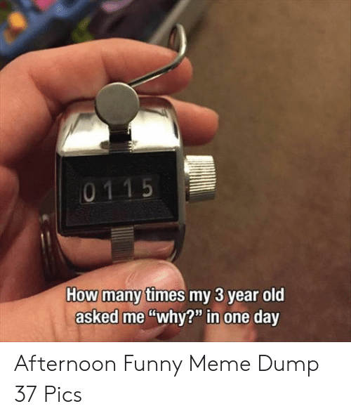 """Funny, Meme, and Old: ny times my 3 year old  asked me""""why?"""" in one day Afternoon Funny Meme Dump 37 Pics"""