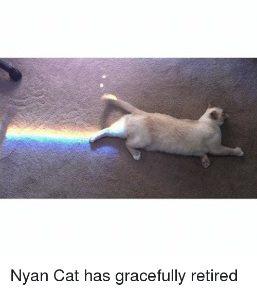nyan cat has gracefully retired 15251849 ✅ 25 best memes about nyan cat nyan cat memes