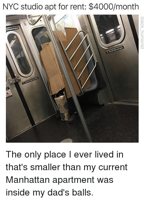 Memes, Manhattan, and 🤖: NYC studio apt for rent: $4000/month The only place I ever lived in that's smaller than my current Manhattan apartment was inside my dad's balls.