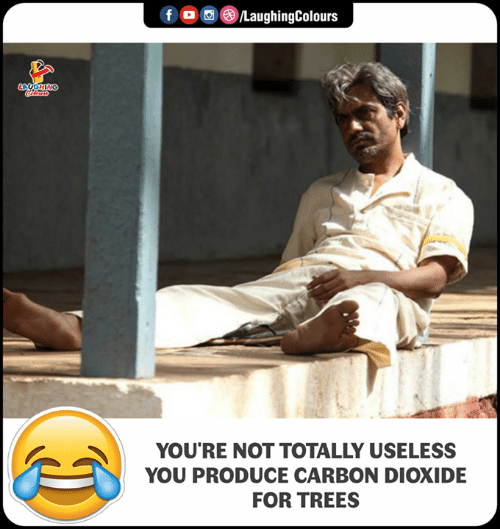 Trees, Indianpeoplefacebook, and Carbon: o  ,e)/LaughingColours  YOU'RE NOT TOTALLY USELESS  YOU PRODUCE CARBON DIOXIDE  FOR TREES