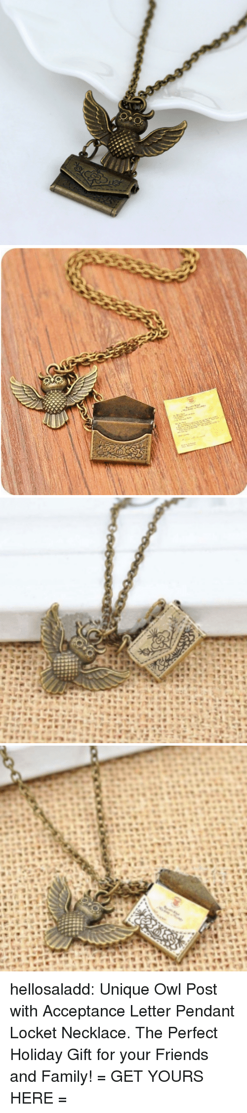 Family, Friends, and Tumblr: :O  ENY hellosaladd: Unique Owl Post with Acceptance Letter Pendant Locket Necklace. The Perfect Holiday Gift for your Friends and Family! = GET YOURS HERE =
