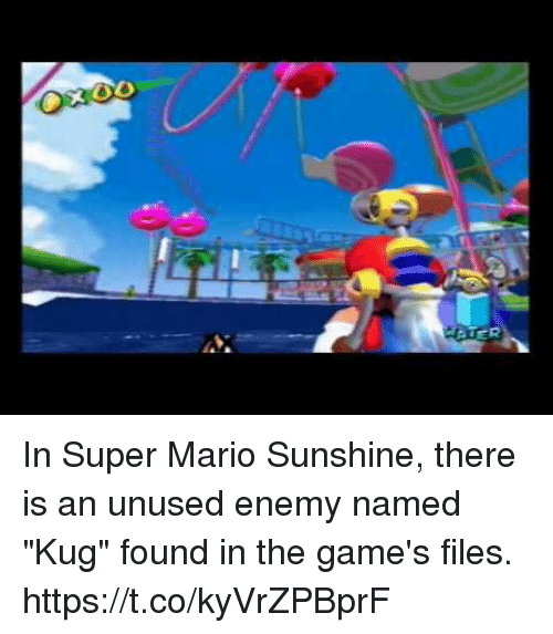 O ER in Super Mario Sunshine There Is an Unused Enemy Named Kug