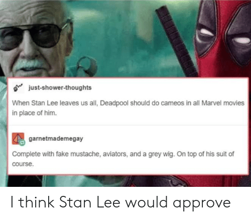 Fake, Movies, and Shower: o just-shower-thoughts  When Stan Lee leaves us all, Deadpool should do cameos in all Marvel movies  in place of him.  garnetmademegay  Complete with fake mustache, aviators, and a grey wig. On top of his suit of  course I think Stan Lee would approve