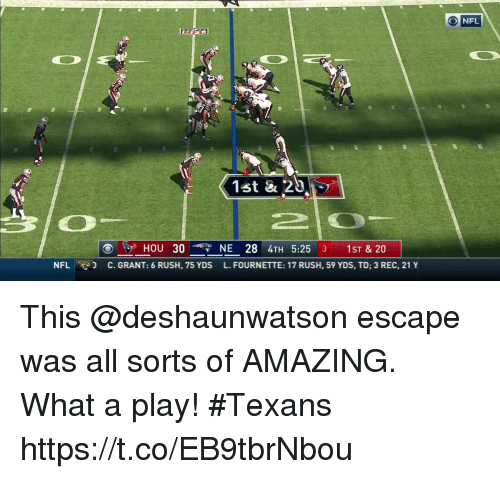 Memes, Nfl, and Rush: O NFL  (1st & 20  HOU 30-7 NE 28 4TH 5:25 3 1ST & 20  NFL  e-]  C. GRANT: 6 RUSH, 75 YDS  FOURNETTE: 17 RUSH, 59 YDS, TD; 3 REC, 21 Y This @deshaunwatson escape was all sorts of AMAZING.  What a play! #Texans https://t.co/EB9tbrNbou