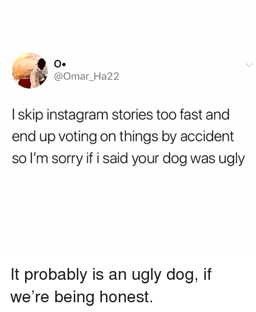 Instagram, Memes, and Sorry: O.  @Omar Ha22  I skip instagram stories too fast and  end up voting on things by accident  so I'm sorry if i said your dog was ugly It probably is an ugly dog, if we're being honest.