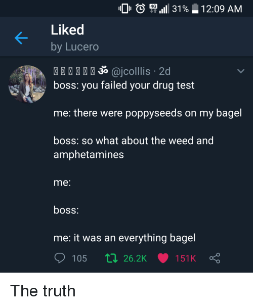 Weed, Test, and Drug Test: O ( P,111 31%  4G  1 2:09 AM  Liked  by Lucero  35 @jcolllis 2d  boss: you failed your drug test  me: there were poppyseeds on my bagel  boss: so what about the weed and  amphetamines  me  boss  me: it was an everything bagel  105 п 26.2K 151 K The truth