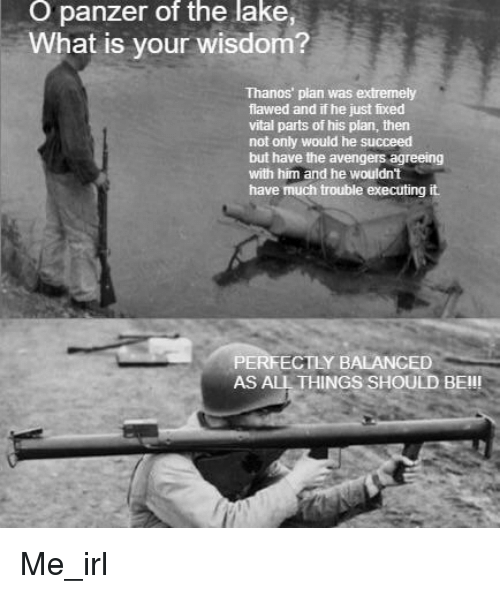 O Panzer Of The Lake What Is Your Wisdom Thanos Plan Was Extremely